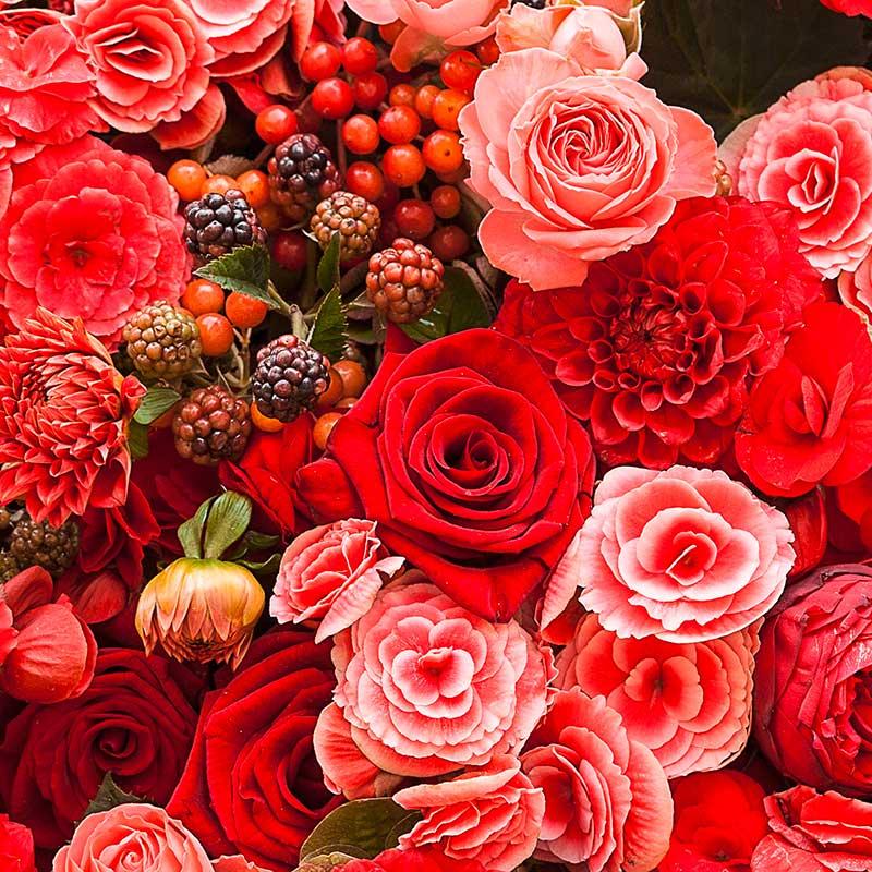 1a-blumen-kamm-florist-Gaggenau-sortiment-teaser